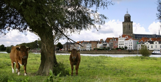 Deventer en omgeving